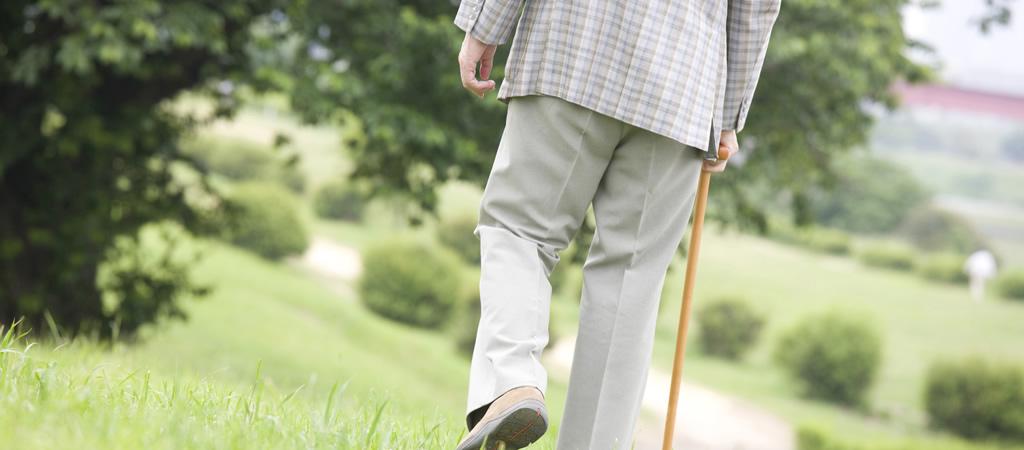 お父さんの散歩